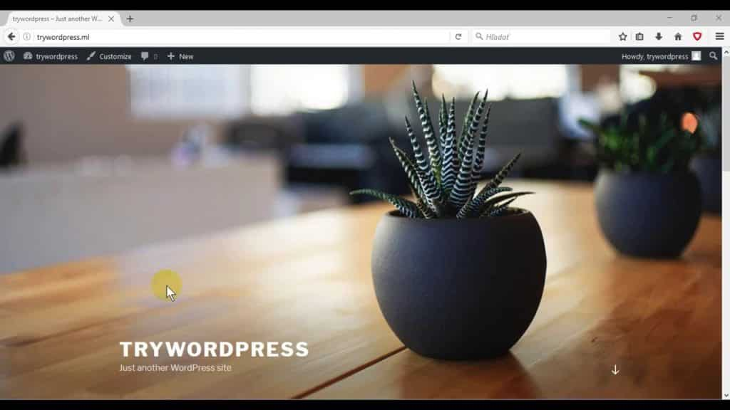 Twenty Seventeen theme WordPress